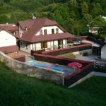 Hotel Pictures: Pension Karolína, Trnava