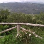 Holiday home Belvedere,  Montevarchi