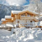 Ski Chalet Jim,  Zell am See