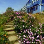 Hotel Pictures: Hostal Faro Azul, Valparaíso