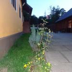 Pensiunea Radu,  Cisnădie