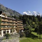 Hotel Alpenrose Wengen, Wengen