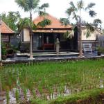 Londo Suite, Ubud