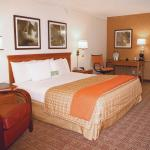 Motel 6 Houston Medical Center - Reliant Park,  Houston