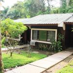 Ceiba Tops,  Santa Teresa