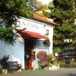 Penzion Na Starém Brně, Brno