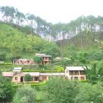 Woods Resort, Almora
