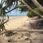 Peponi Beach Resort, Pangani