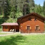 Hotel Pictures: Jagdhaus, Biberwier