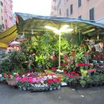 Casa Regina Holidays,  Rome