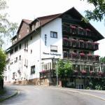 Hotel Pictures: Hotel Ludwigstal, Schriesheim