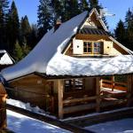 Domek drewniany w górach,  Nowy Targ