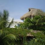 Casa Mocha, Puerto Escondido