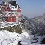 Hotel Steinerne Renne, Wernigerode