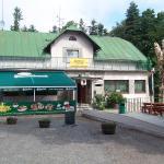 Hotel Pictures: Penzion Čertovy Kameny, Jeseník