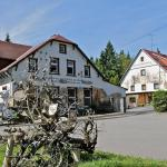 Hotel Pictures: Pension Waldschänke, Geyer