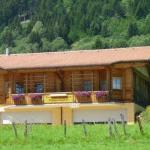 Fotos do Hotel: Ferienwohnung Suntinger, Iselsberg