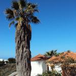 Casas Las Dos Palmeras, Los Llanos de Aridane