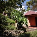 Martam Village Resort, Gangtok