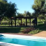 Hotelfoto's: Cabañas Brisas de Chacras, San Javier