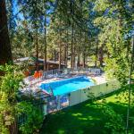 Pine Cone Resort 323, Zephyr Cove