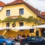 House Trta, Ljubljana