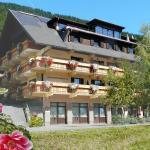 Ferienhaus Herwig Schwarzenbacher,  Weissensee