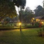 Green Mansion Jungle Resort, Sauraha