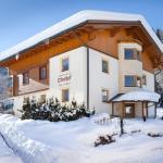 Zdjęcia hotelu: Appartements Oberhof, Flachau