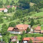 Hotel Pictures: Danielenhof, Freiamt