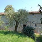 Casa Milù,  Fibbialla