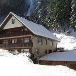 Hotel Pictures: Ferienwohnung Lioba Huber, Bad Peterstal-Griesbach