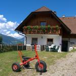 Fotos del hotel: Lercherhof, Feld am See