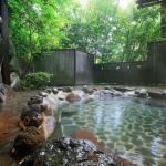 Shiunso,  Hakone
