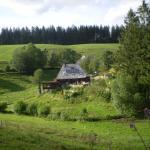 Hotel Pictures: Grundhäusle, Gütenbach