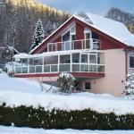 Hotel Pictures: Ferienwohnung Christine, Bad Wildbad