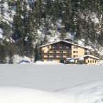 酒店图片: Schönauer Hof, 巴赫