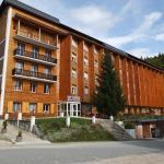 Hotel Pictures: Hôtel Le Fontenay, Plateau d'Assy