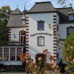 Hotel Pictures: Villa Sophienhöhe, Kerpen