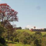 Hotel Pictures: Quedas Park Hotel, Abelardo Luz