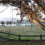 Fotos de l'hotel: Mulgoa Valley Guesthouse, Wallacia
