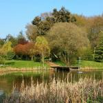 Hotel Pictures: Wildwood Garden Suites, Cranleigh