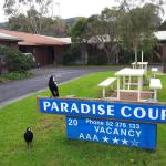 Paradise Court, Apollo Bay