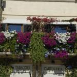 Appartamento Benincampi,  Rome