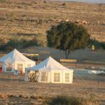 Desert Camel Safari, Sām