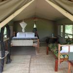Angalia Tented Camp, Mikumi