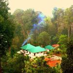 Green Shades, Munnar