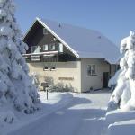 Ferienhaus Helga, Winterberg