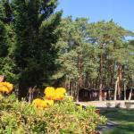 Ośrodek Portus, Międzywodzie