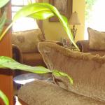 Hotel Pictures: Yoli's Bed & Breakfast, Belmopan